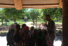 Campers learning about the elephant conservation project