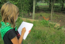 A camper sketching at the Koan School