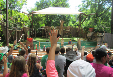 Campers watching the bird show at the Dallas Zoo
