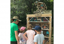 Campers looking at the insect house at LLELA
