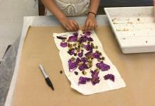 Natural dye student workshop
